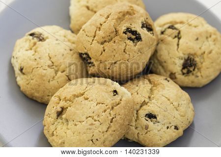 Close up of chocolate chip cookies on white plate