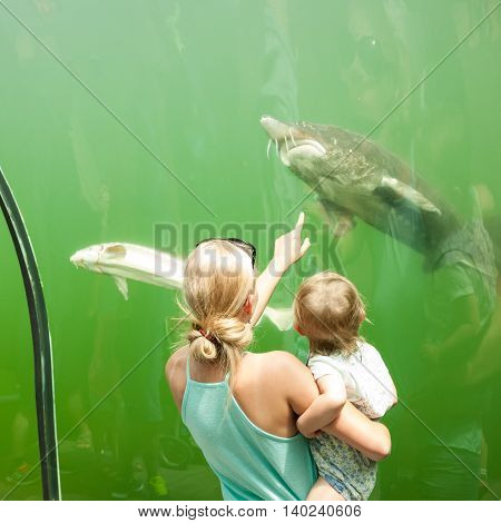 Mother and daughter looking at fish in an freshwater aquarium