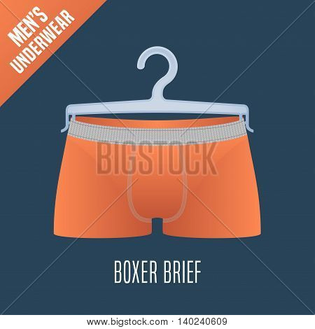 Men's underwear vector illustration. Men boxer brief boxers underwear model. Clothing detail design element on hanger display for retail