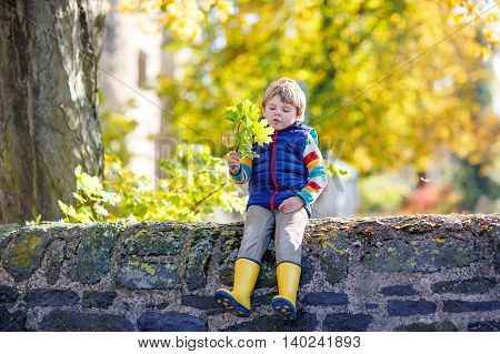 Funny little kid boy of 3 years playing with yellow maple leaves in autumn park. Child having fun on cold fall sunny day. Happy childhood and outdoor leisure concept. With golden foliage on background