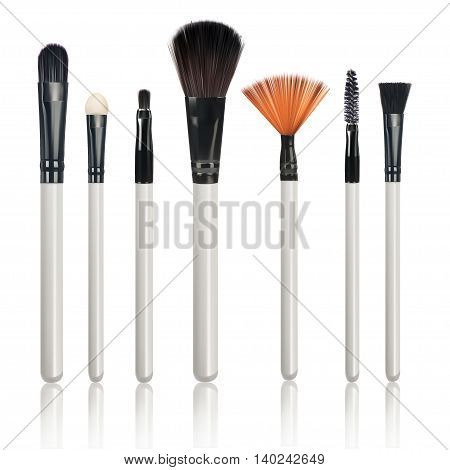 Makeup Brushes with reflection on isolated white background vector