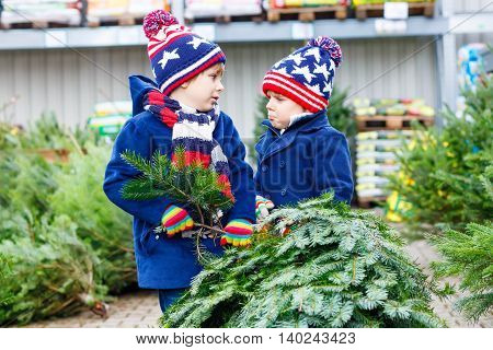 Two little sibling kid boys holding christmas tree. Happy children in winter clothes choosing and buying xmas tree in outdoor shop. Family, tradition, celebration concept