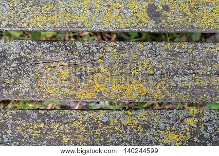 Close-up view of an old timbered rusty wooden bench