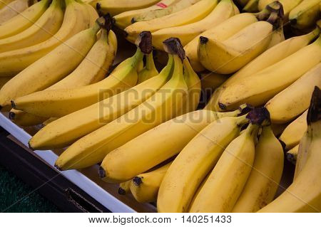 Bunch Of Bananas At Market Stall