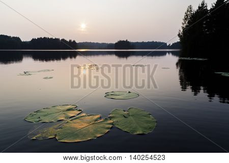 Sunset Over The Lake In Pure Nature