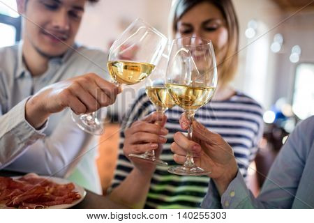 Friends toasting wineglass by counter in bar