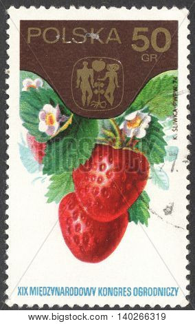 MOSCOW RUSSIA - CIRCA JANUARY 2016: a post stamp printed in POLAND shows strawberries (Fragaria grandiflora) the series