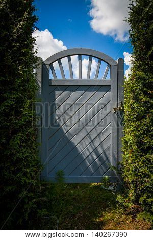Gate in the hedge.  The entrance to the green gardens.