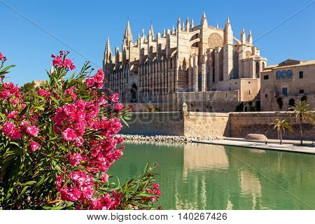 The Cathedral of Santa Maria of Palma also La Seu is a Gothic Roman Catholic cathedral located in Palma Mallorca Spain.