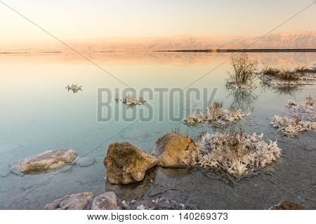 Sunset lights at Dead Sea beach with salt crystals and flora, Israel.