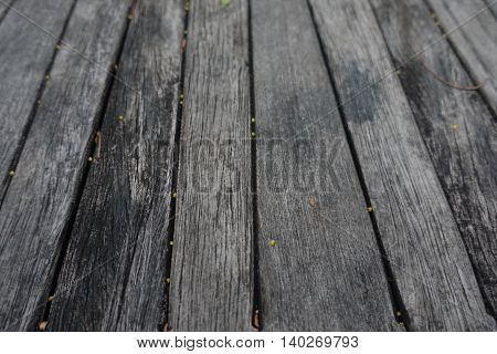 wood textured backgrounds in public park thai
