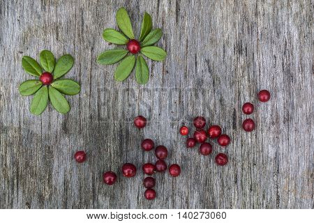 Fresh ripe cranberries with leaves lying on the old vintage wooden table. Background for nature themes. Horizontal overhead view