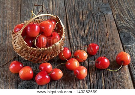 Ripe cherries in basket and near on dark wooden background