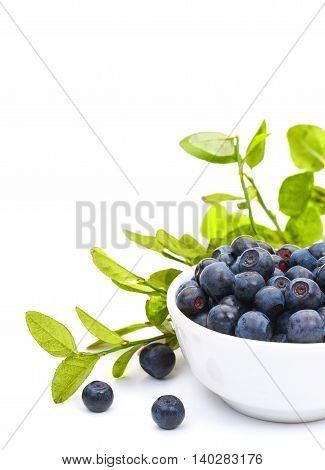 Ripe Fresh Blueberries In A Small White Ceramic Bowl, Isolated On White Background, Close-up. Vertic