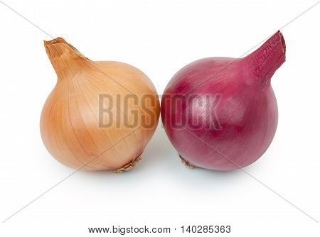 Pair Of Ripe Yellow And Red Onions Isolated On A White Background.