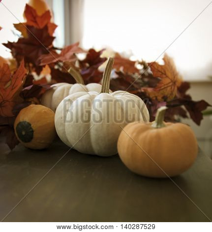 pumpkins and gourds with autumn leaves on a wood surface with a retro vintage instagram filter app or action