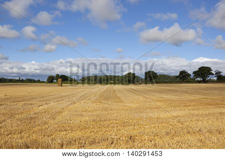Hay Stacks In Summer