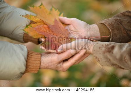 Couple of hands together with leaves close up
