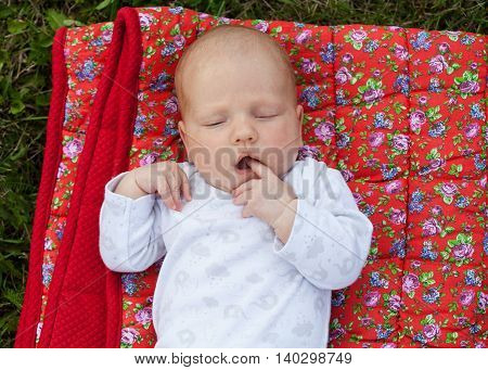 Newborn baby sucking the finger laying on a plaid outdoors