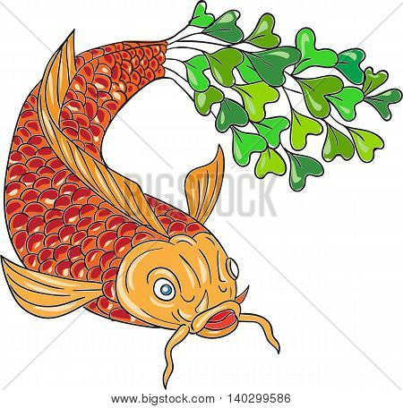 Drawing sketch style illustration of a trout fish with microgreen tail viewed from front set on isolated white backgroud done.