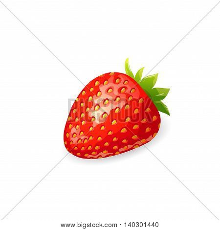 Vector illustration of ripe red strawberry with green leaves on white background