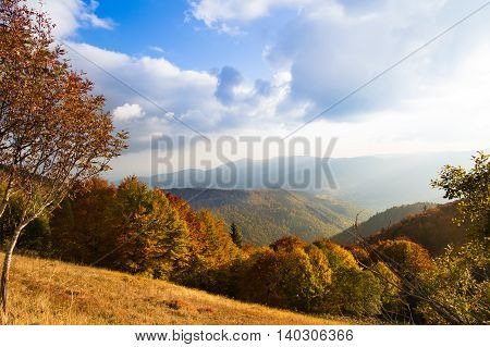 Beautiful view of Alsace mountain and hill landscape in autumn by sunny weather. Nature of France in fall.
