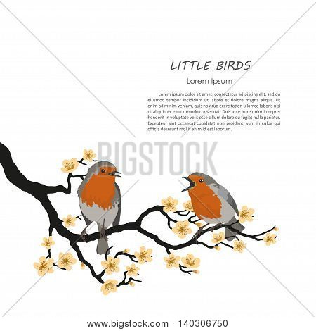 Two birds sitting on a flowering branch. Vector illustration