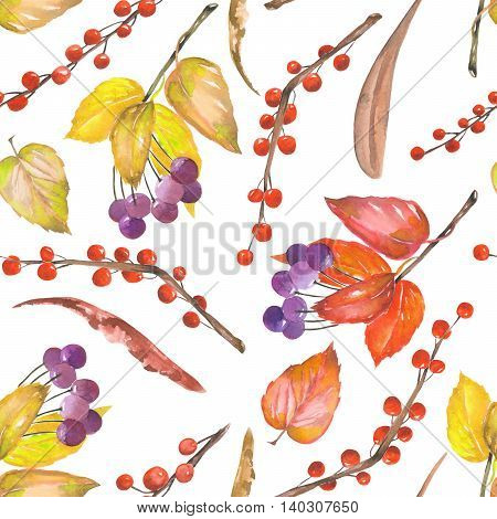 A seamless pattern with a floral ornament of the watercolor forest elements: red and yellow autumn leaves on the branches, berries on the twigs, hand drawn on a white background