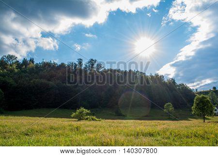 Sun shining on a beautiful green field