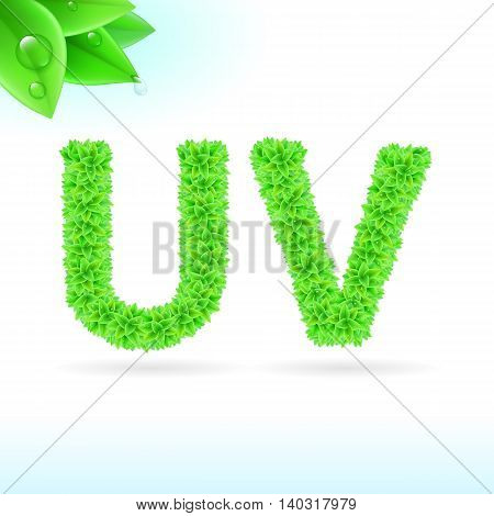 Sans serif font with green leaf decoration on white background. U and V letters
