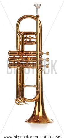 Brass cornet standing upright, short on white background