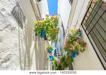 Detail of the Calleja de las Flores in the Barrio de la Juderia, next to the Mezquita Catedral de Cordoba, it is one of the most popular and tourist streets of city of Andalusia in Spain.