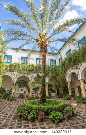 Cordoba, Andalusia, Spain - April 20, 2016: The beautiful and decorated courtyard of popular Palacio de Viana in Cordoba in Andalusia of Spain.
