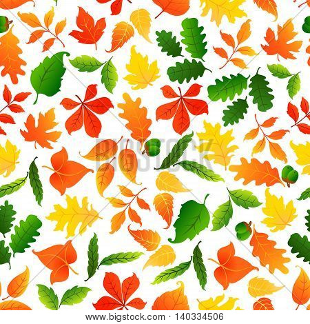 Colorful leaves seamless pattern background. Autumn foliage wallpaper with vector elements of maple, birch, aspen, elm, poplar