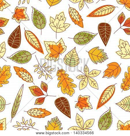 Leaves pattern background. Seamless wallpaper with foliage. Vector leaf icons of maple, birch, aspen, elm, poplar