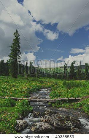 Bridge Through A Mountain Stream