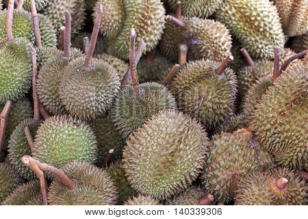 Durian fruit in Thailand market for selling