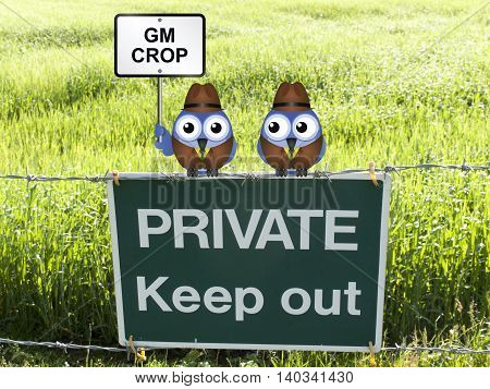 Farmers growing genetically modified crop in their field perched on a private keep out sign