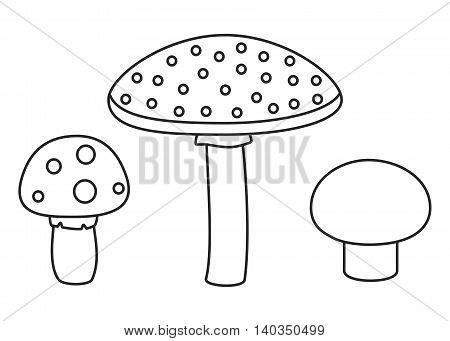 Line set of different mushrooms. Vector illustration.