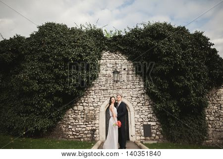 Elegant beautiful wedding couple, bride and groom posing in park near a wall of bushes.
