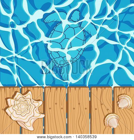 Marine summer background with water, shells, turtle. Vector illustration.