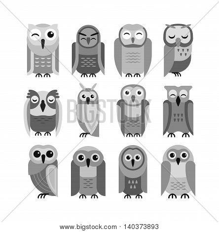 Cute vector collection of bright cartoon owls. Animal character cartoon owl comic funny collection. Doodle cheerful birds behavior cartoon owl