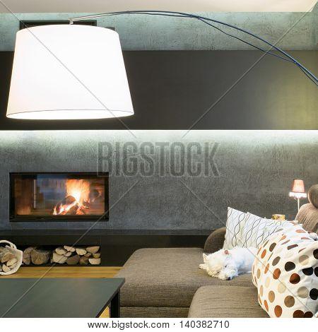 Designed lamp in modern luxury living room