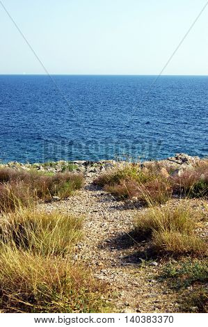 Nature on the Montenegrin coast in the summer