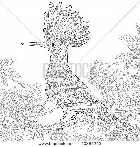 Stylized hoopoe (Upupa epops) sitting on tree branch among rowan berries. Freehand sketch for adult anti stress coloring book page with doodle and zentangle elements.