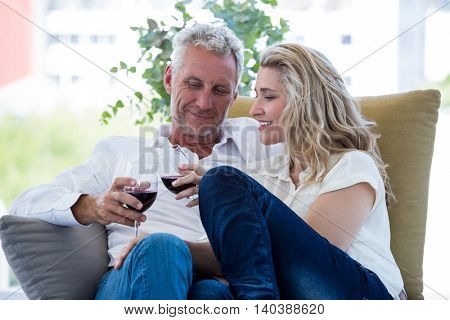 Smiling mature couple toasting red wine while sitting at home