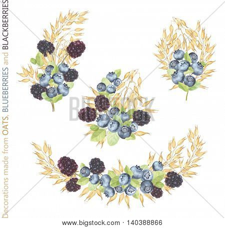 Collection of decorations made from Oats, Blueberries and Blackberries. Vector illustration in vintage style with berries and grains. Symbol of healthy eating.