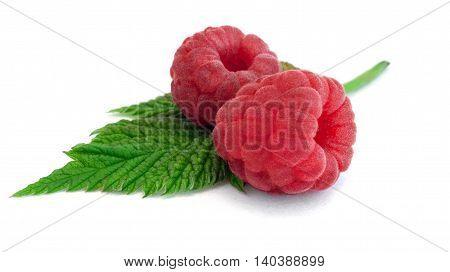 Raspberry on a white background from ecofarma
