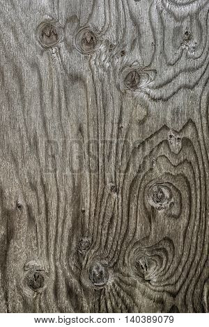 Texture shapes and patterns of the grain and knots in a plank of faded wood