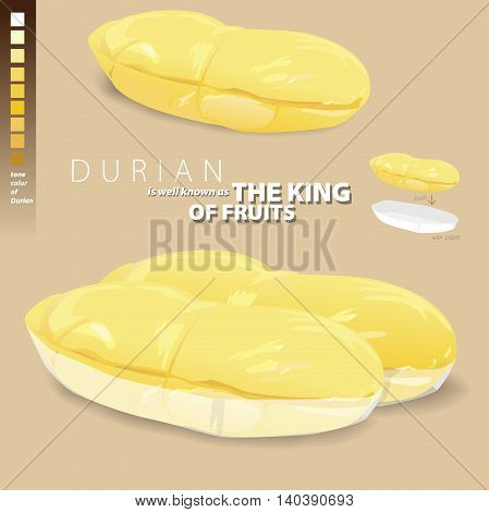 Durian is a fragrant and sweet and is well known as the king of fruits. Illustrate vector present Durian in paper pack for sale.